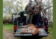 Another man-eating leopard was killed by hunter Joey Hukil